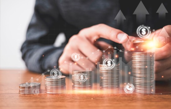 Investor Visa Services Mohali